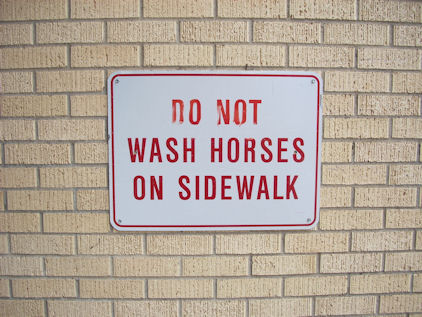 No Horse Washing