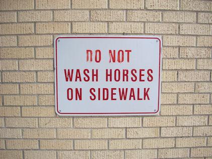 No Horse Washing
