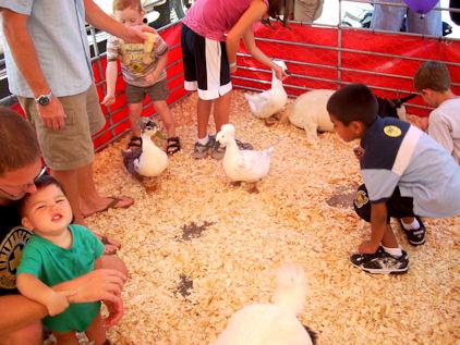 Kids and Ducks